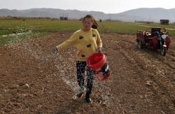 搶農時 務農事