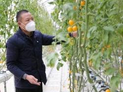 射阳县长荡镇:疫情防控与春耕生产两不误