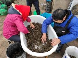 大縱湖旅游度假區農業防疫復產兩不誤