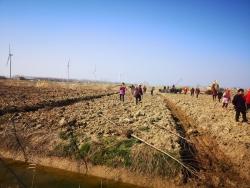 濱??h自然資源和規劃局:全力推進春季造林綠化工作