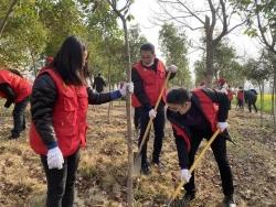 """大丰区纪委监委开展""""种一棵小树,绿一方净土""""义务植树活动"""