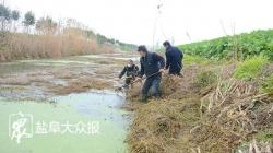 防疫环保两不误 美丽河道我守护志愿者下河捞水草杂物