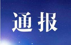 武汉市通报:网传一位记者披露武汉有新增确诊病例的情况不实
