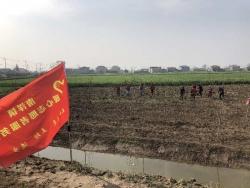 亭湖区南洋镇组织开展植树节志愿服务活动
