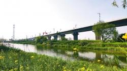 鹽通高鐵24小時輪班作業高效推進工程進度