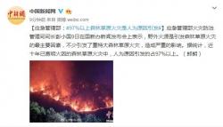 应急管理部:97%以上森林草原火灾是人为原因引发