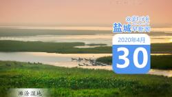 """鹽城早新聞4月30日丨今年全國""""兩會""""召開時間公布;全球確診新冠肺炎超300萬例"""