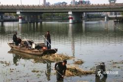凈化母親河