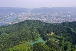 重慶縉云山:綠意盎然生態美