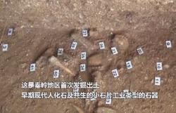 2019年度全國十大考古新發現揭曉
