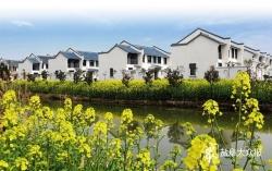 共建美好环境 共享幸福生活——盐都区建设新型农村社区改善农民居住环境