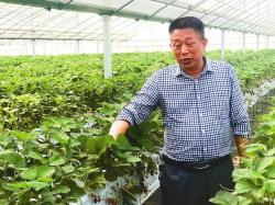 江苏best365:危中寻机,变中突破,现代农业发展创新求进
