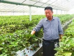 """变中突破,现代农业创新求进 ——""""危中寻机稳发展""""系列报道之六"""