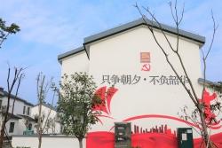 建湖县高作镇:彩绘文化墙  传递正能量
