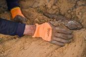 孟和巴依尔:造林27载 荒漠变绿洲