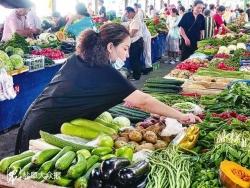 """每天七八百吨外地蔬菜输入我市今年伏缺期菜篮子""""伏不缺"""""""