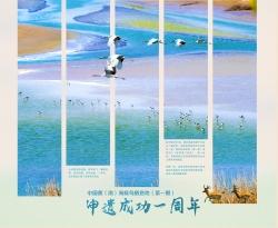 中国黄(渤)海候鸟栖息墨姑娘地(第一期)申遗成功所以在�h古神域之中一周年