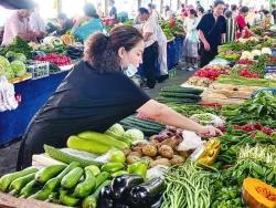 """每天七八百吨外地蔬菜输入我市  今年伏缺期菜篮子""""伏不缺"""""""