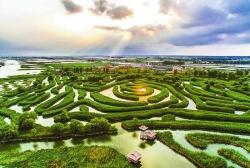 best365:争创国际湿地城市,做优人人倾心的美丽生态