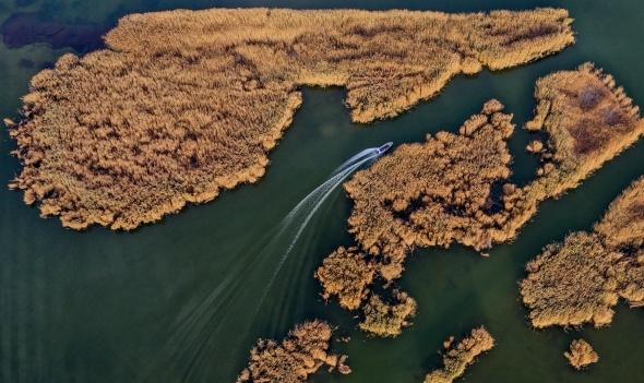 水生态改善 乌梁素海成鸟类天堂