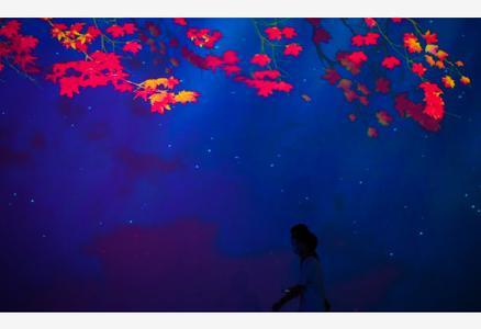 廣州:燈光璀璨夜