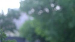 系列纪录片《加油脱贫攻坚》第三十集《脱贫路上的善港号》