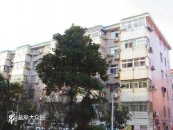 楼顶装饰瓦常坠落令居民不安 欧景苑小区11号楼安全隐患急需排除