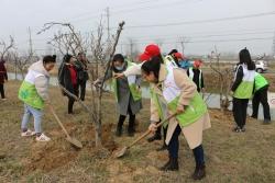 阜寧縣阜城街道提升植樹播綠品位 強化造林督查考核