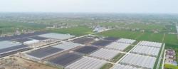 盐东镇全力推进智能玻璃温室EPC项目