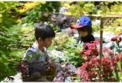 杭州举办花园生活节