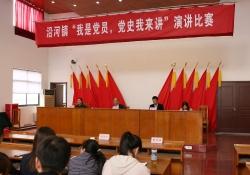 建湖县沿河镇:青年党员主题演讲激情澎湃