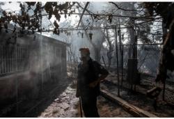 希腊阿提卡州发生山火