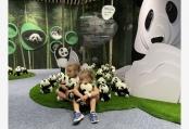 迪拜世博會迎來中國大熊貓保護主題展