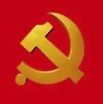 党建花红满眼春——2019年全市基层党建工作回眸