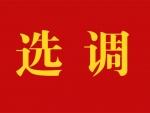 江苏省盐南高新区2020年面向社会公开选调教师公告