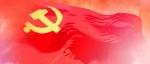 仲组轩:上下贯通 执行有力 抓好党的组织体系建设 把党的组织优势巩固好、发挥好